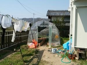 種用のビニールハウス
