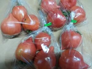 プラネットトマト150317_123956