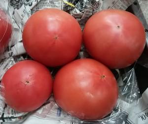 のらくらトマト801_104001