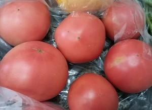 ありがとうトマト150907_114150
