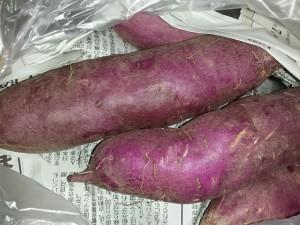 紫芋013_103618