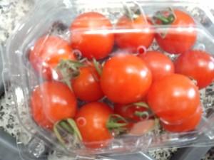 トマト2_115448